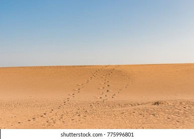 Footprints uphill in Corralejo Sand Dunes on blue sky. Fuerteventura background