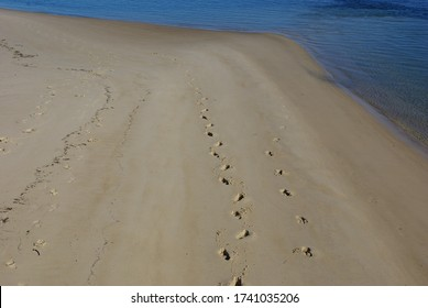 Footsteps in the sand at Bribie Island