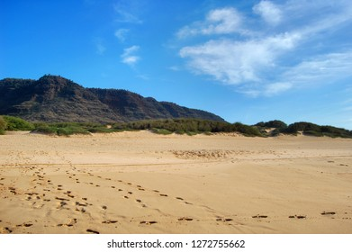 Footsteps in the sandy beach, of Polihale State Park on the Island of Kauai, Hawaii, head in every direction as visitors leave their imprint in the sand.