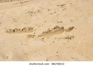 Footsteps in the  sandy dunes  near the Indian Ocean at  isolated Buffalo Beach near Bunbury Western Australia on a calm  tranquil spring  morning.