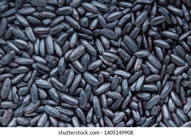 Forbidden rice (also known as black rice) close up. Ancient grain with impressive health benefits. Healthy food concept.
