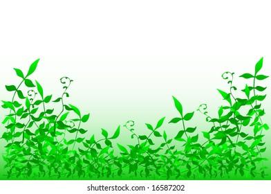 Foreground illustration of bushy foliage