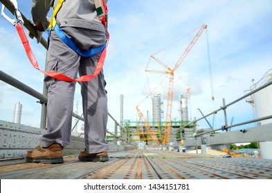 Foreman, supervisor, engineer standing on scaffolding and put on safety harness during working at Height to controls work for support building construction site of petrochemical plant, oil and gas.