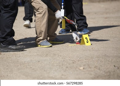 forensic or law enforcement  team seach and evidence marker in crime scene training