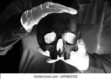Forensic pathologist. Doctor in rubber gloves holding human skull. X-Ray style image
