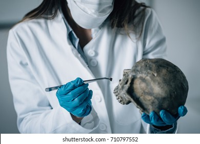 Forensic Science in Lab. Forensic Scientist examining skull with evidences