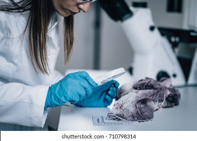 Forensic Science in Lab. Forensic Scientist examining textile with blood evidences