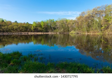 forest across pond and reflections atop water during spring at salem hills park in inver grove heights minnesota