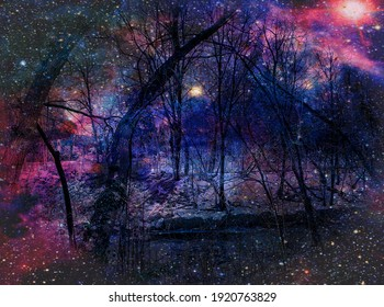A forest adjoining a lake on a snowy evening