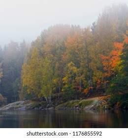 Forest in autumn colours by the lake