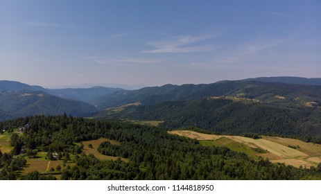 forest background from air