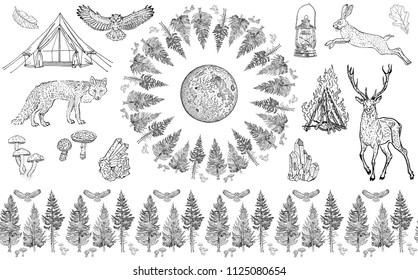 Forest collection: seamless border ornament, round frame, isolated objects. Spruce, tree, mushroom, moon, owl, hare, deer, fox, tent, bonfire, camping lamp, crystals. Endless pattern, coloring page.