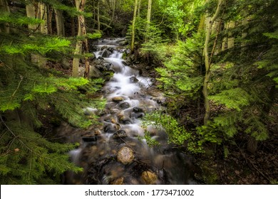 Forest creek water flow on stones