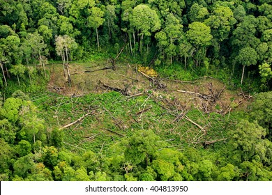 forest destruction with rainbow in thailand form Aerial view