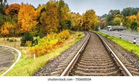 Forest during autumn near  railways