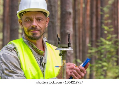Forest engineer works in the forest. Forestry worker looking at the camera. Work in the forestry.