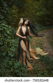 A forest fairy wanders through the forest with a white owl. Gyana is a mythical creature in a green dress. Artistic Photography