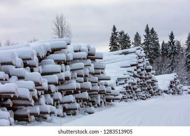 Forest felling and big stack of trees in Finland. There is winter and snow on the ground.
