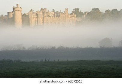 Forest and field scene with mist and fog with ancient castle visible in background