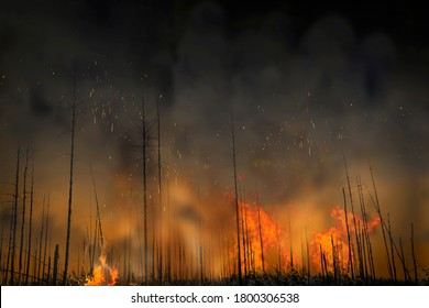 Forest fire with black trees, flames, dark smoke and sparks flying in the hot air