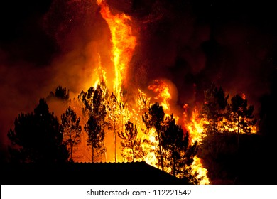 Forest fire close to houses at night, Braga, Portugal.