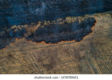 Forest fire. Dry grass burning in the field. View of the burning and scorched fields. Aerial view.