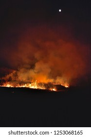 The forest fire at night.