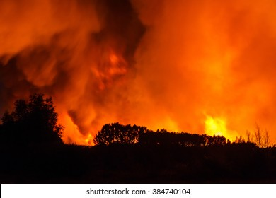 Forest fire overnight. Sierra del Pinar, Tabuyo del Monte, Leon.