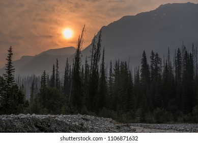 Forest fire smoke in Kootenay National Park, Canada