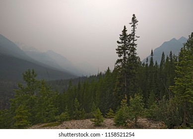 Forest Fire Smoke in Kootenay National Park