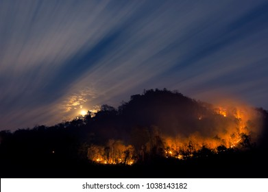 Forest fire, Wildfire burning tree on mountain with red and orange color at night in the forest at night, North Thailand.