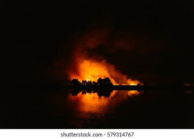 Forest Fire, Wildfire. Night fire in the forest with reflection in river
