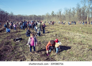 Forest friends/Eco friendly activity involving planting trees on cleared areas inside Balta Neagra forest near Bucharest with of kindergarten and school kids. Ilfov County, Romania, November 14, 2015.