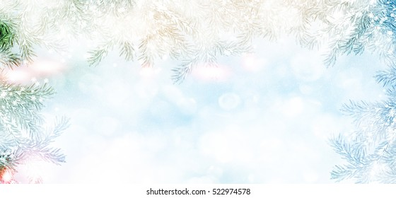 forest in the frost. landscape. Snow covered trees. Christmas card