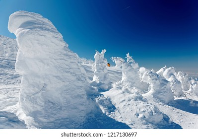 A forest of giant Juhyo (snow covered ice trees or snow monsters) on the frozen snowy mountainside under blue clear sky in Zao hot spring (onsen) & ski resort on a sunny winter day, in Yamagata, Japan