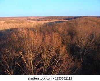 Forest Glen Nature Preserve in Illinois