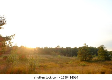 Forest and hay countryside landscape around sunset showing the dusk colors in the sky