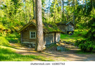 Forest huts in woods. Camping in forest