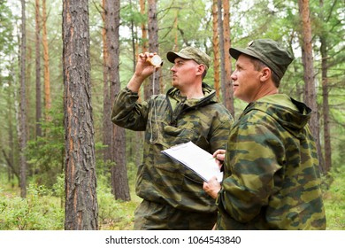 The forest inspector and a group of foresters determine the direction of sanitary felling of the forest and mark the site with the help of a geodesic compass.