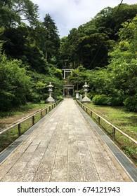 Forest japan