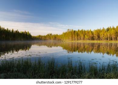 Forest lake landscape summer sunrise in Finland