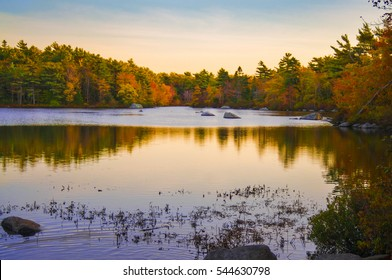 Forest and lake reflection in fall with rock beach, frog pond park landscape in Halifax, Nova Scotia