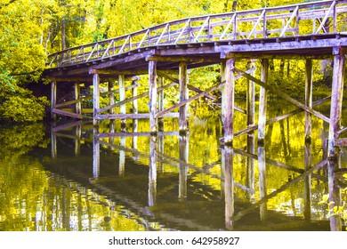 Forest landscape. A beautiful lake in the Kiev region, the village of Pushcha-Voditsa, Ukraine.