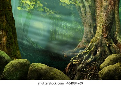 Forest landscape with old trees, sunbeams, mossy stones, roots