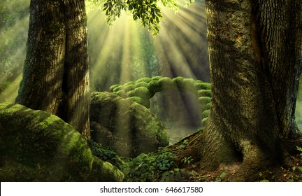 Forest landscape with stone bridge, sunbeams, mossy rocks, old trees