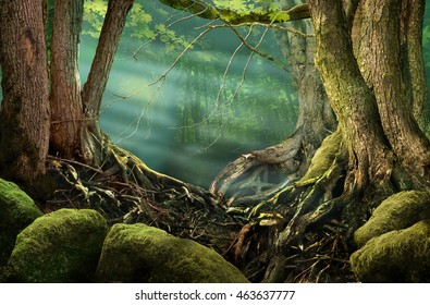 Forest landscape with sunbeams, roots, mossy stones