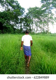 Forest Man of India, Jadav Payeng, in his forest