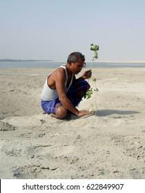 Forest Man of India, Jadav Payeng, palnting tree in his sandbar
