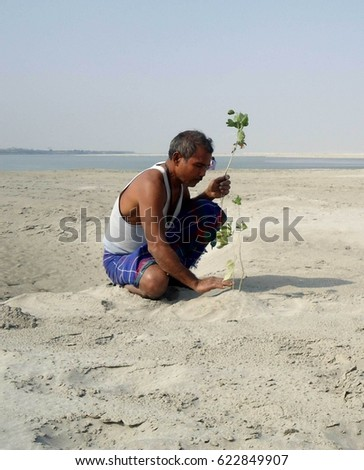 Forest Man of India, Jadav Payeng, palnting tree in his sandbar