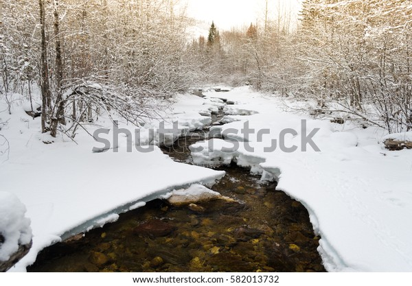 Forest mountain river with the frozen shores